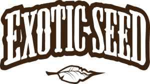 Balíček Exotic Seed - dárek k předplatnému časopisu Legalizace
